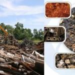 Mε 4 τεσσερις εγκαταστάσεις ανακυκλωση σκραπ μετάλλων σε θεσσαλονίκη και πάτρα και αθήνα και ηράκλειω κρητης υπάρχει η δυνατότητα περισυλλογής σκραπ σχεδόν σε όλη την Ελλάδα.